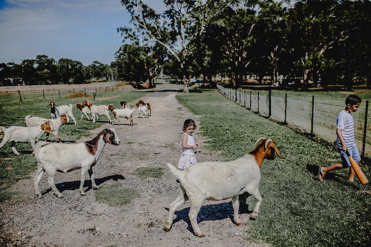 Family-Photography-Sydney-128.jpg