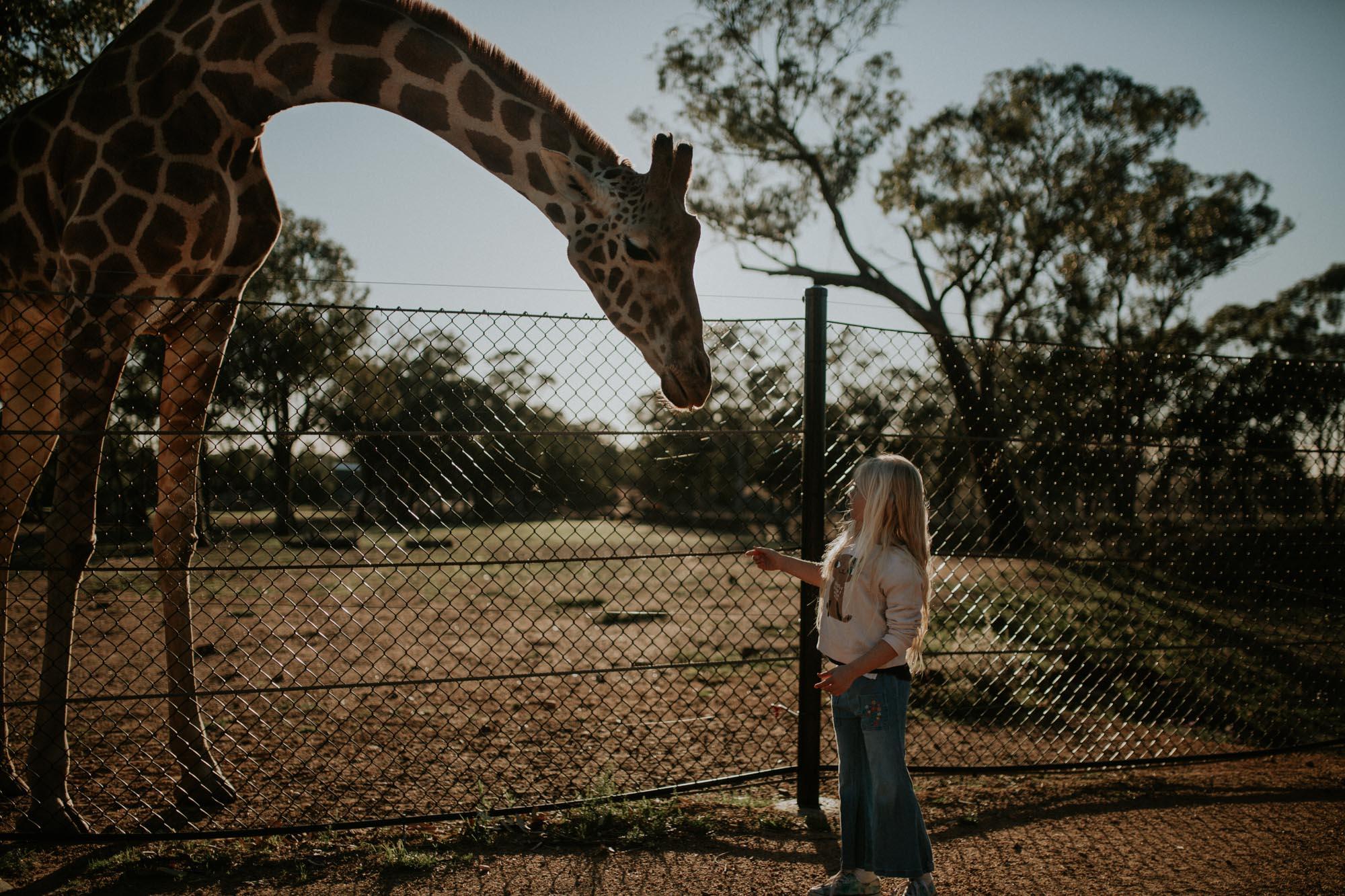 Justine Curran Sydney Family Photography - zoofari-1.jpg