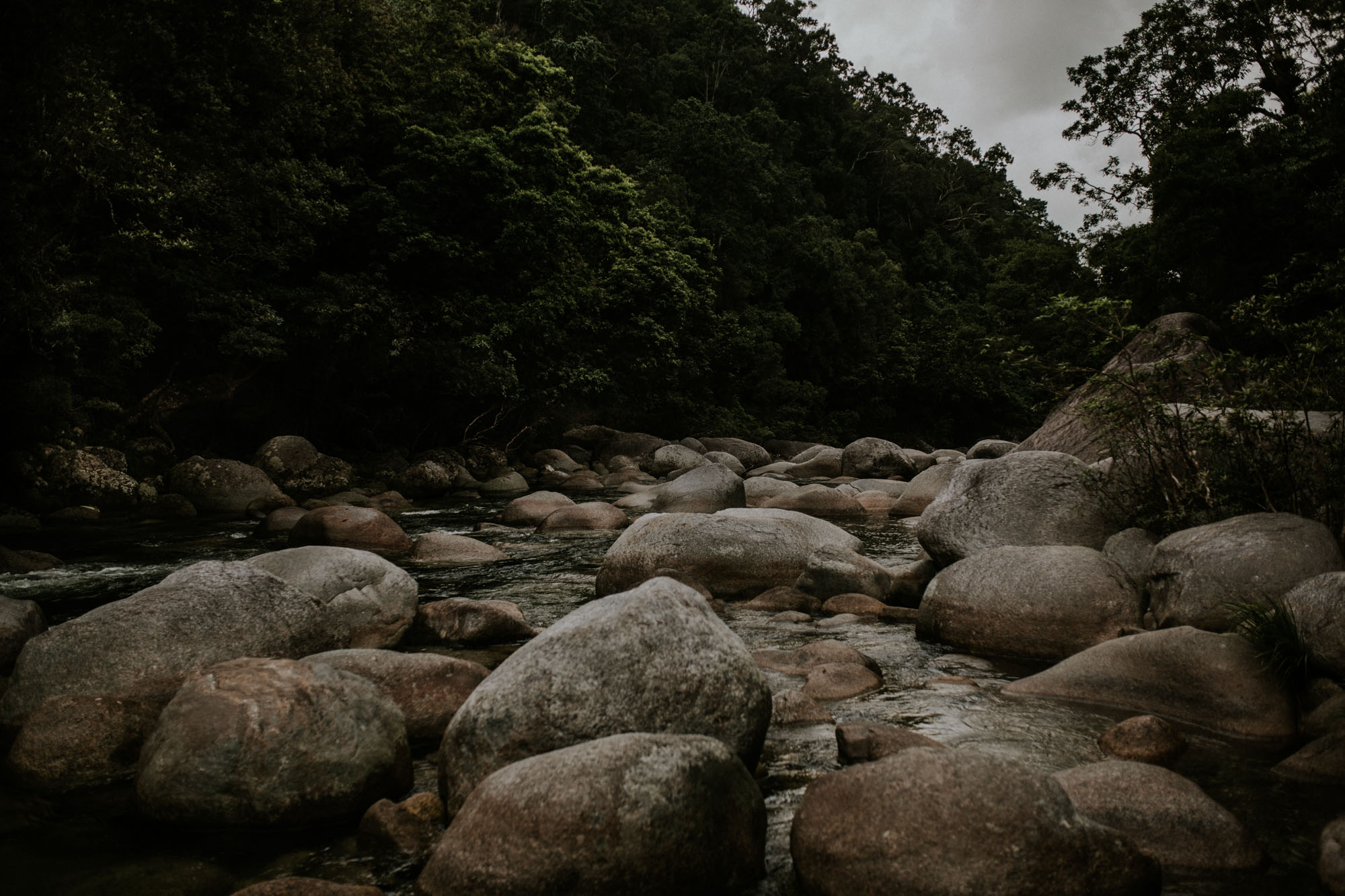 Mossman Gorge - Daintree Rainforest