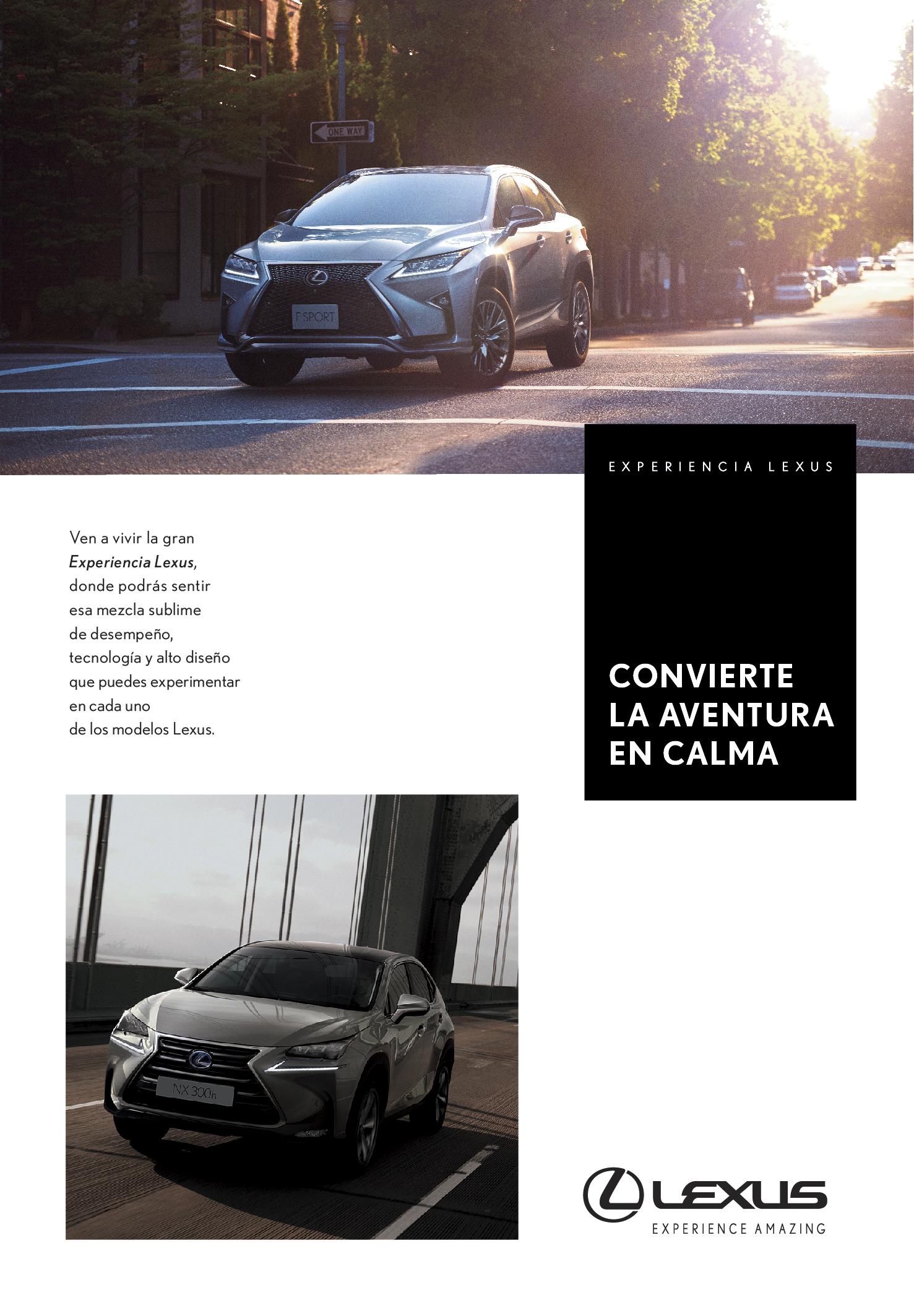 New Lexus4-14.jpg