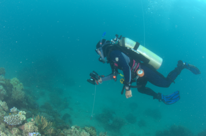 Eva Kovacs (RSRC) conducting a georeferenced photo transect survey, while towing a GPS that floats at the surface.