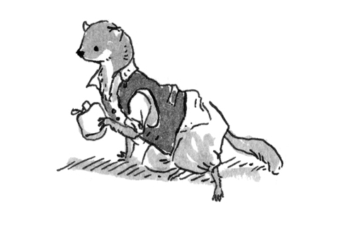 RiverBank-Weasel.jpg