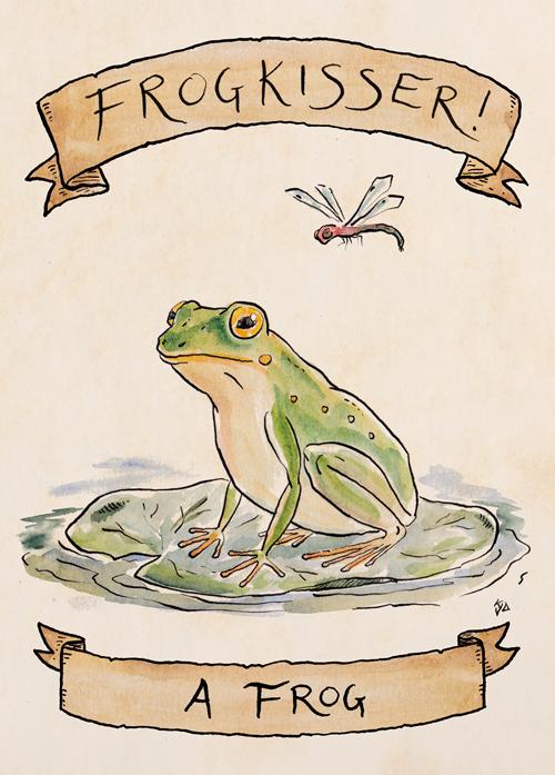 KJennings-Frogkisser-Frog.jpg