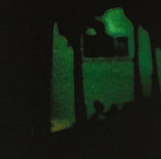 Green Surveillance.jpg