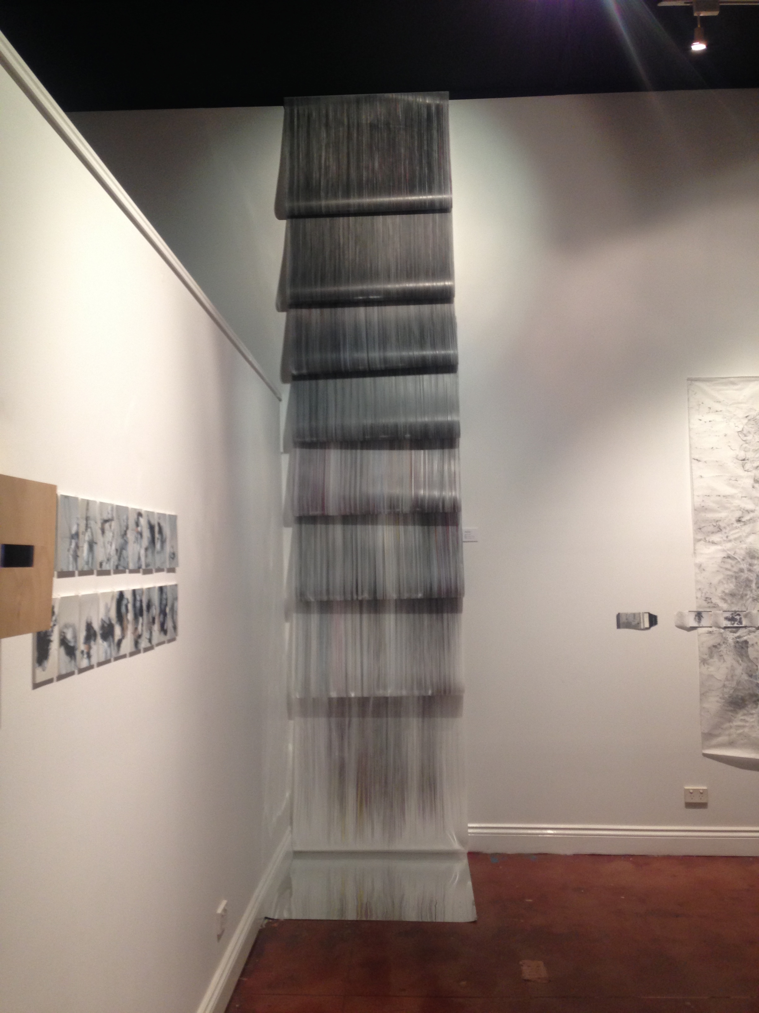Jaanika Peerna  Graphite Falls V ( installation view) 2015, Graphite and colour pencil on Mylar Height variable x 90cm.