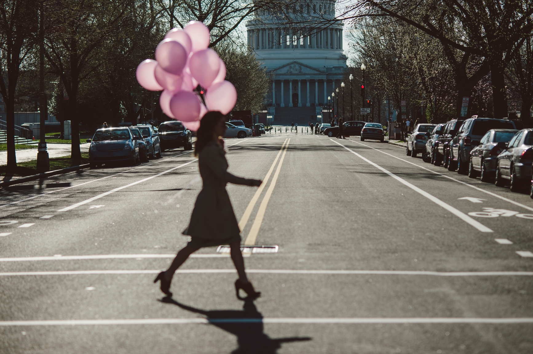 Woman walking across street carrying a bunch of pink balloons, with Capitol building in background