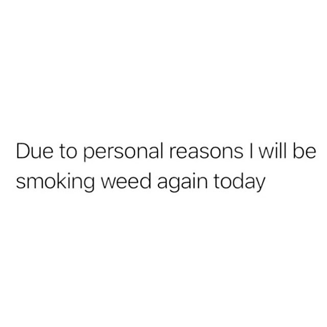 🚨PSA🚨 In case you were curious 🙃  It's true...#cannabis is part of my daily health routine whether it's THC for mood or CBD for soreness! I choose my products + strains wisely & am intentional with my use. I personally medicate for insomnia, depression, anxiety, lack of appetite & pain relief 🍁 It's been empowering finding what works for me & seeing how it positively contributes you your mental, physical, spiritual & financial health.    ⬇️ TAG A FRIEND WHO PROUDLY MEDICATES DAILY & SHARE YOUR FAVE STRAIN OF THE MONTH ⬇️     #curvesandmuscles #cannabiscures #cannabissociety #cannabisheals #cannabisdaily #cannabisinfluncer #CannaWellness #successfulstoner #memedaily #psblogger #plussizeblogger #socalblogger #queerblogger #ocblogger #cannabisadvocate #cannabiseventplanner #brandingmentor #digitalmarketingstrategist #influencerunder5k #420stoner #420fitness #cannabisevents #lacannabisevents #effyourbeautystandards #effyourstandards #holistichealth #holisticlifestyle