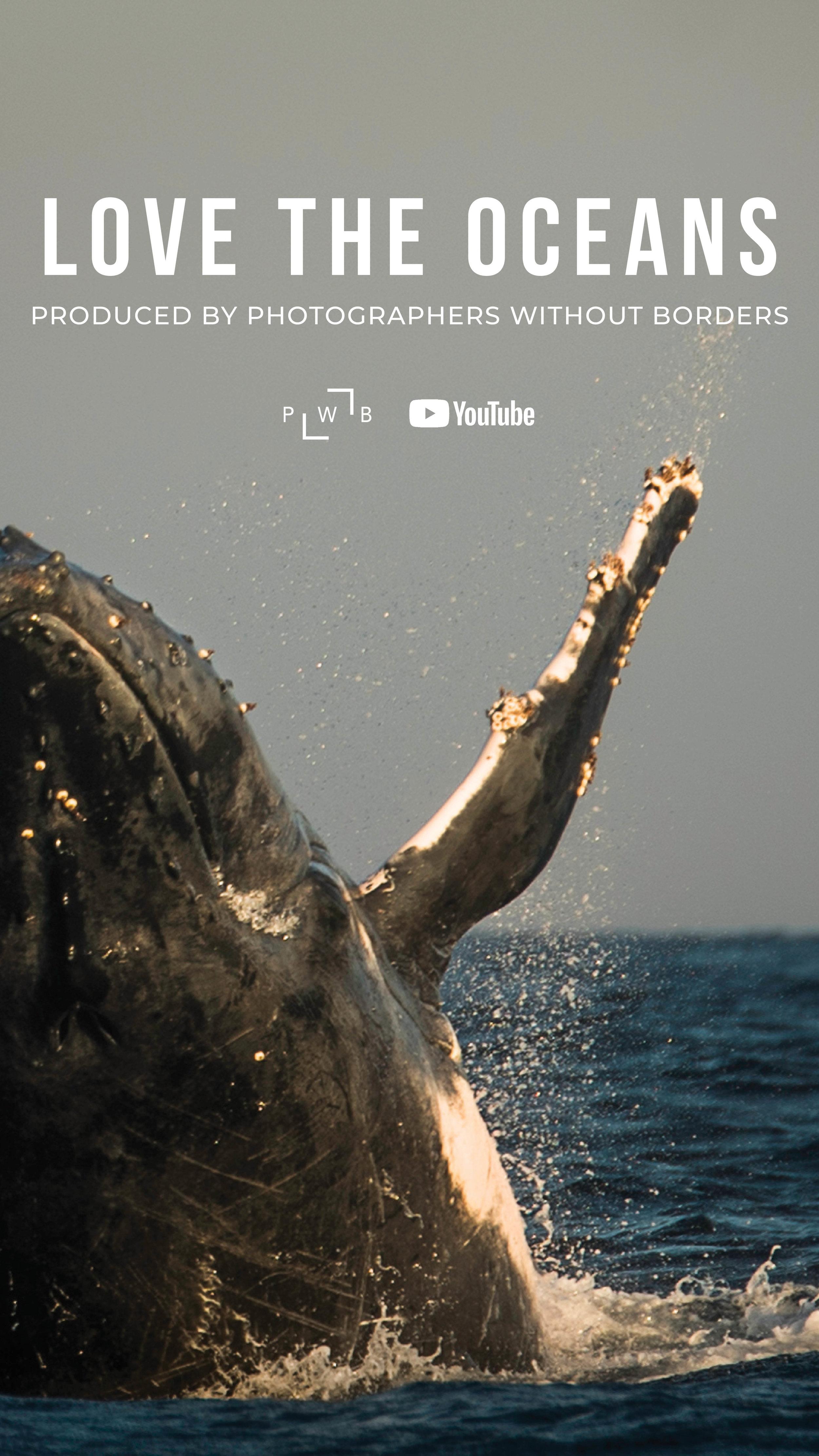PWBSeries_Love the Oceans_Story4.jpg