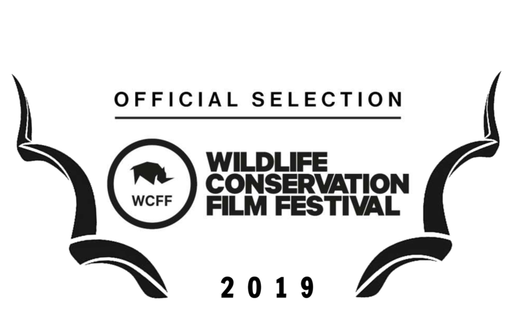 2019+WCFF+Selection+Laurel.png