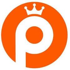 pinacademie logo.jpg