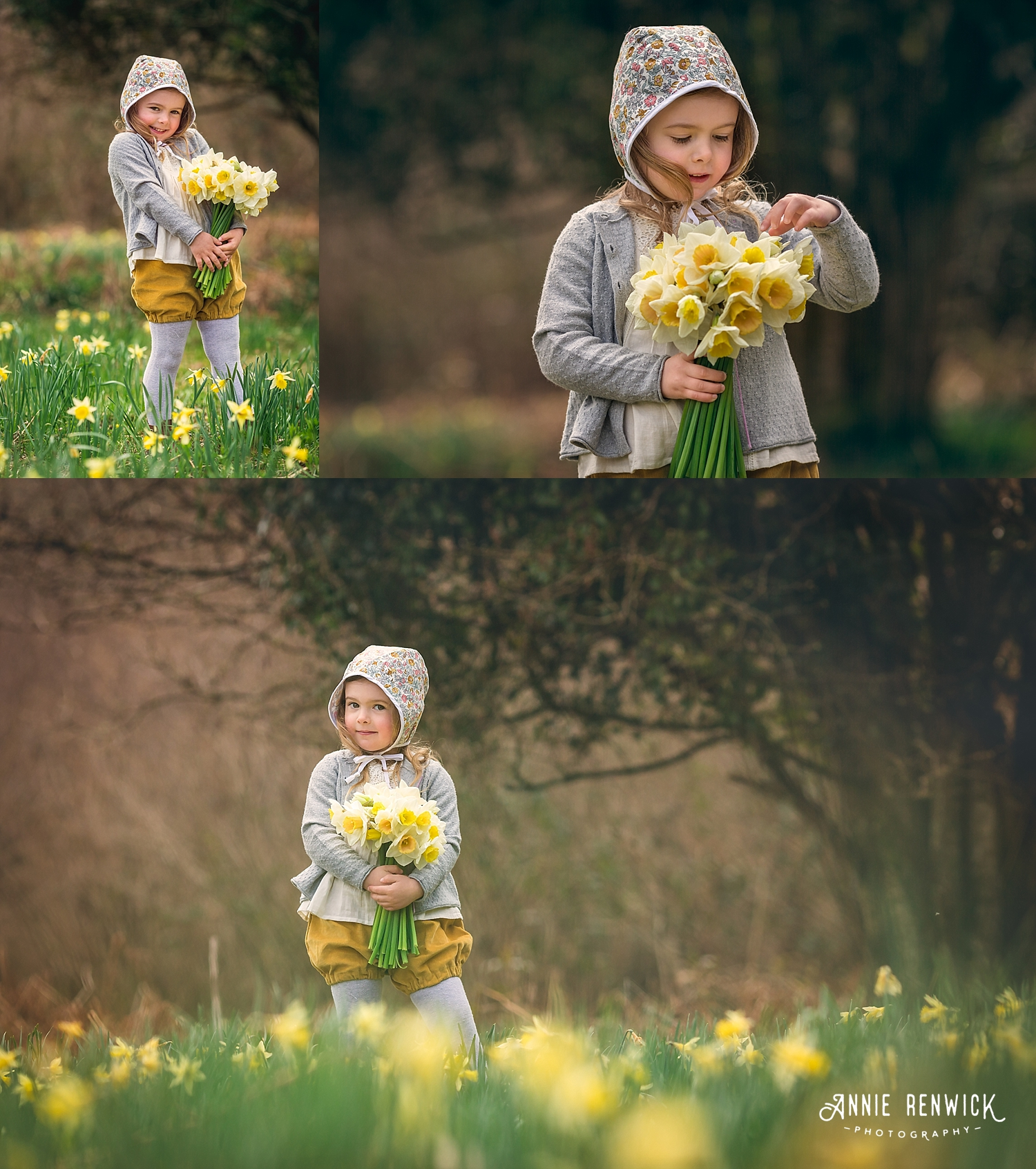 daffodils bunch photos dunsford devon