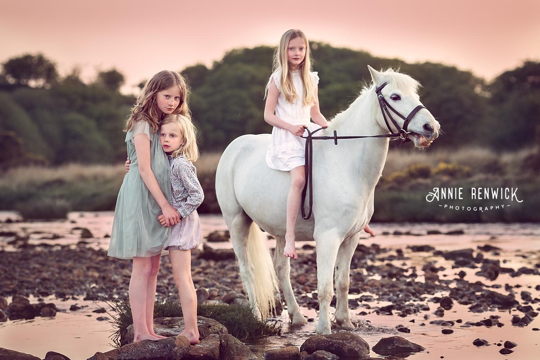 Dartmoor pony photography
