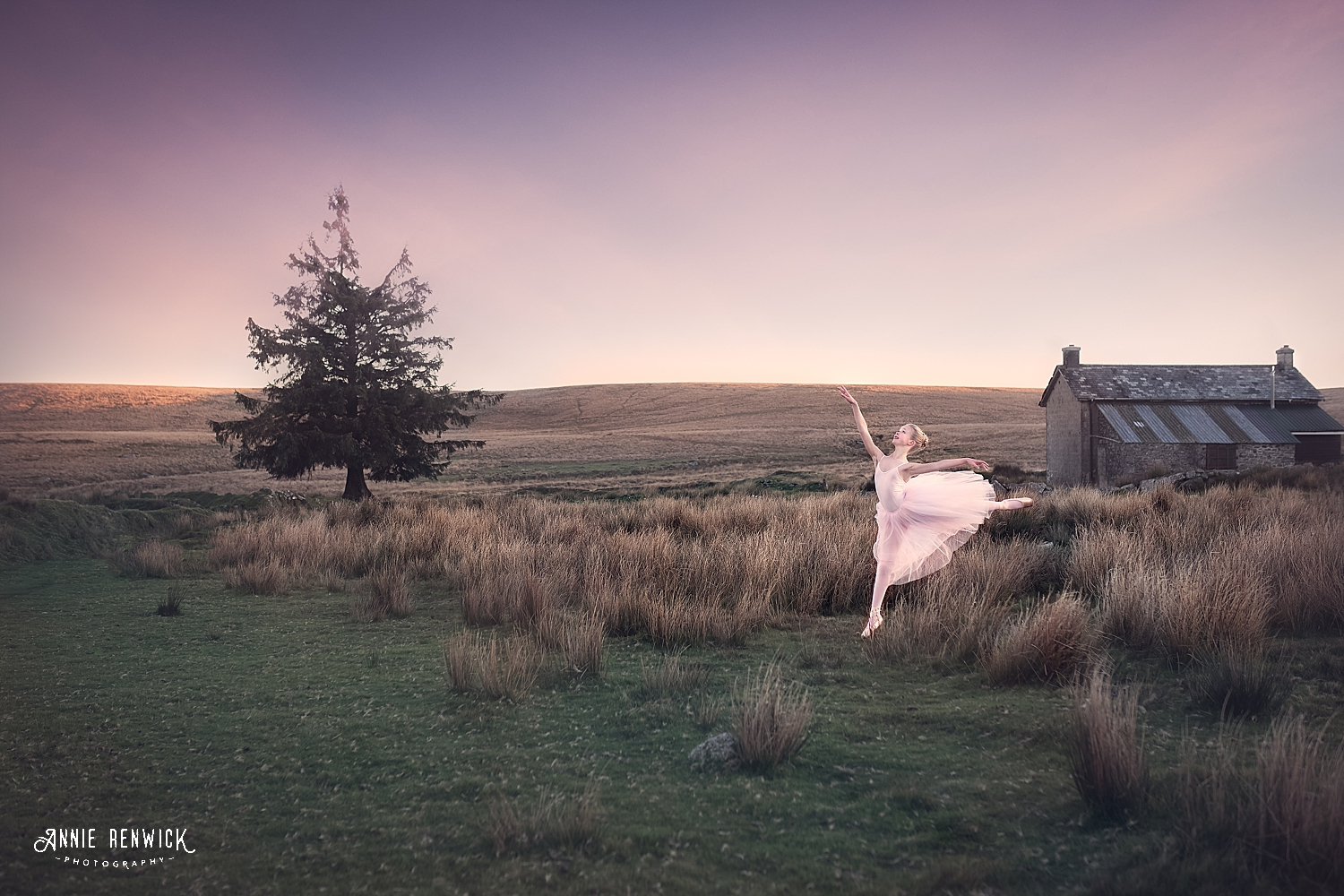 Dartmoor dancer nuns cross farm romantic tutu