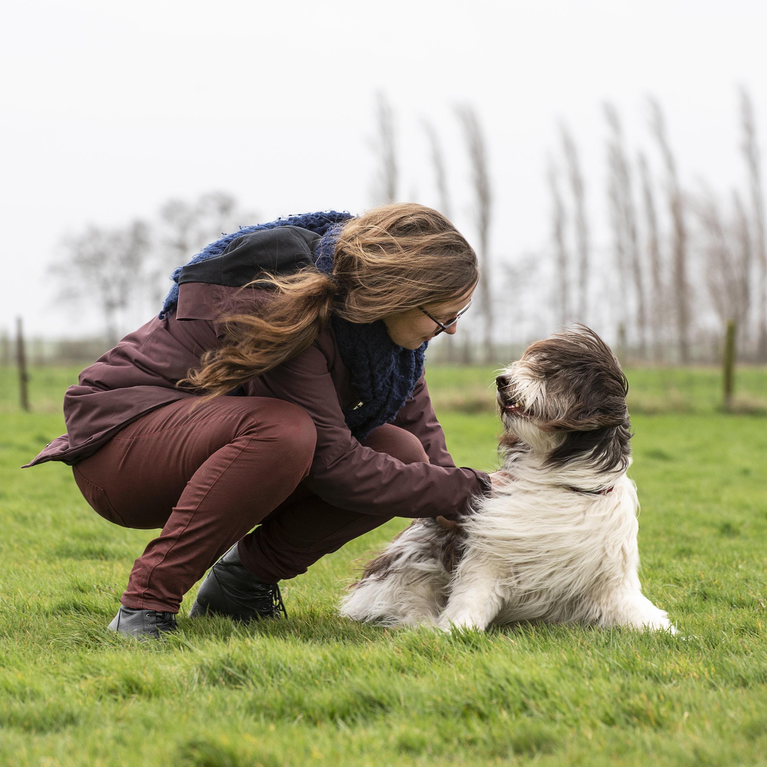 Assistentie - Een assistentiehond als emotie-regulator