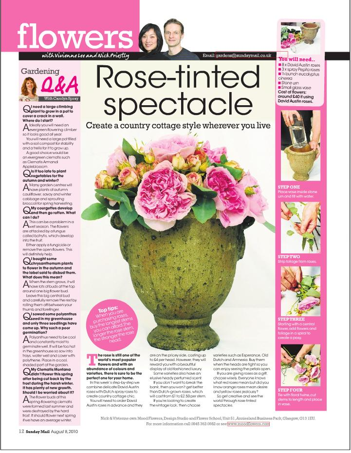 Sunday mail Rose spectacle.JPG
