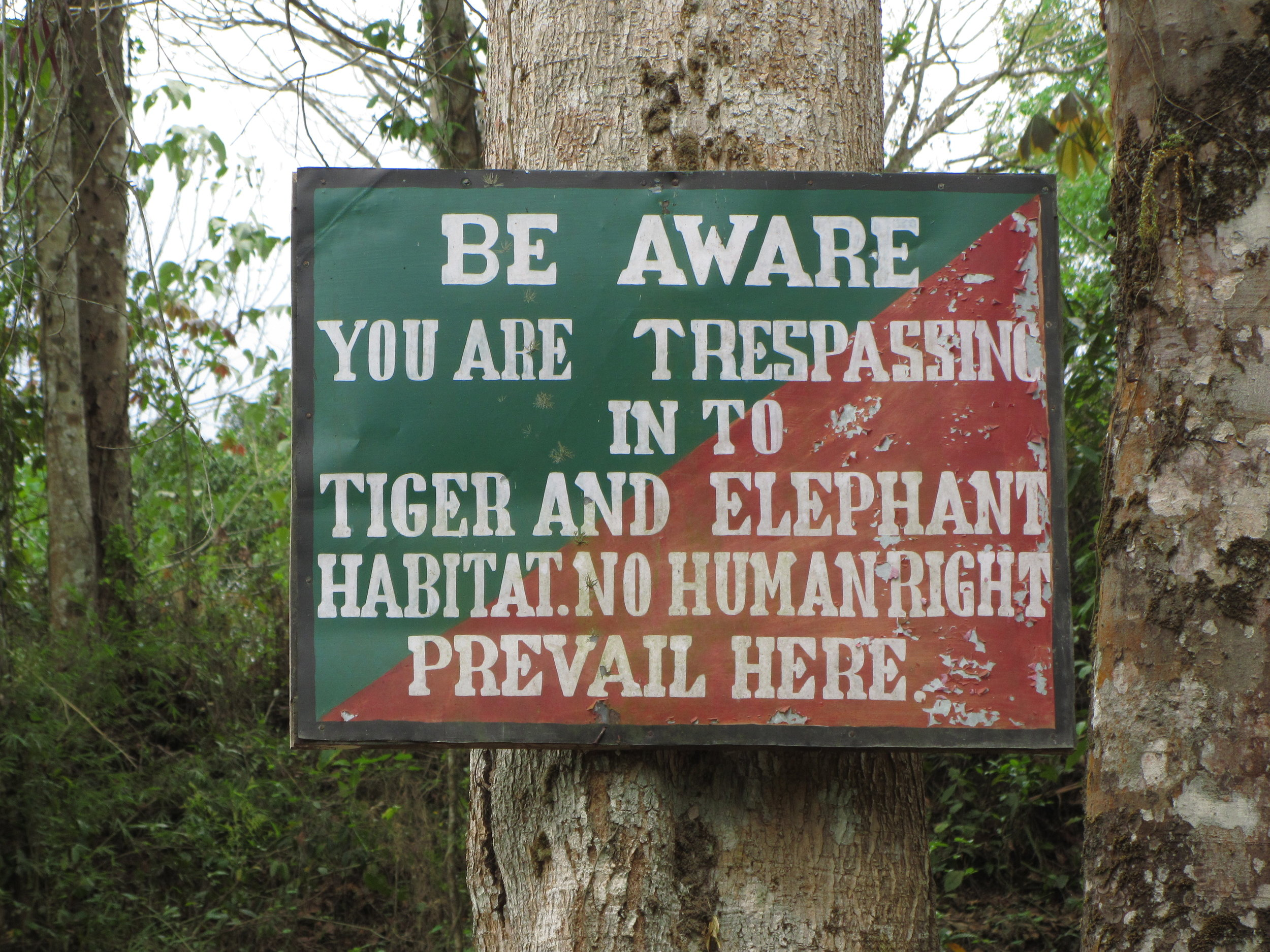 Day 5: A sign in Pakke Tiger Reserve. (Pic credit: Internet)