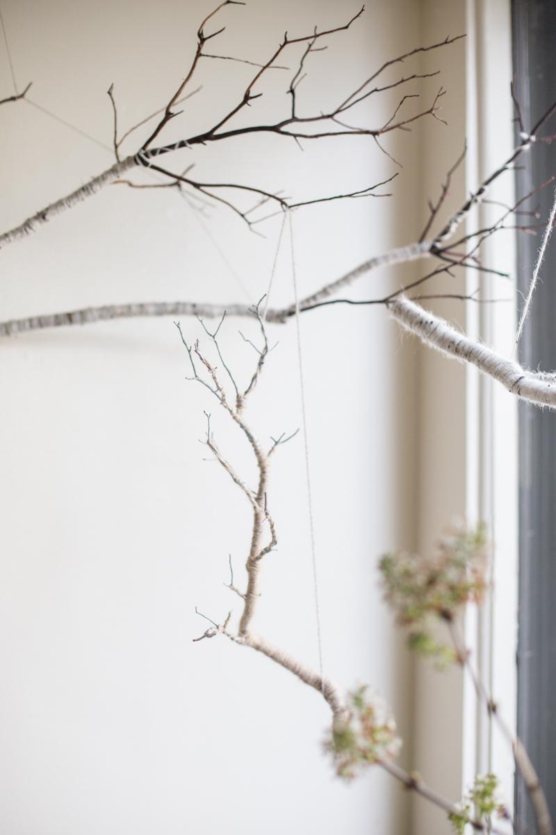 fiber branch_photo by Airyka Rockefeller-2.jpg