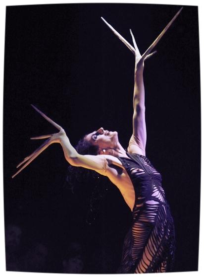 MOIRA FINUCANE - Moira Finucane, one of the world's greatest performance chameleons, hailed as