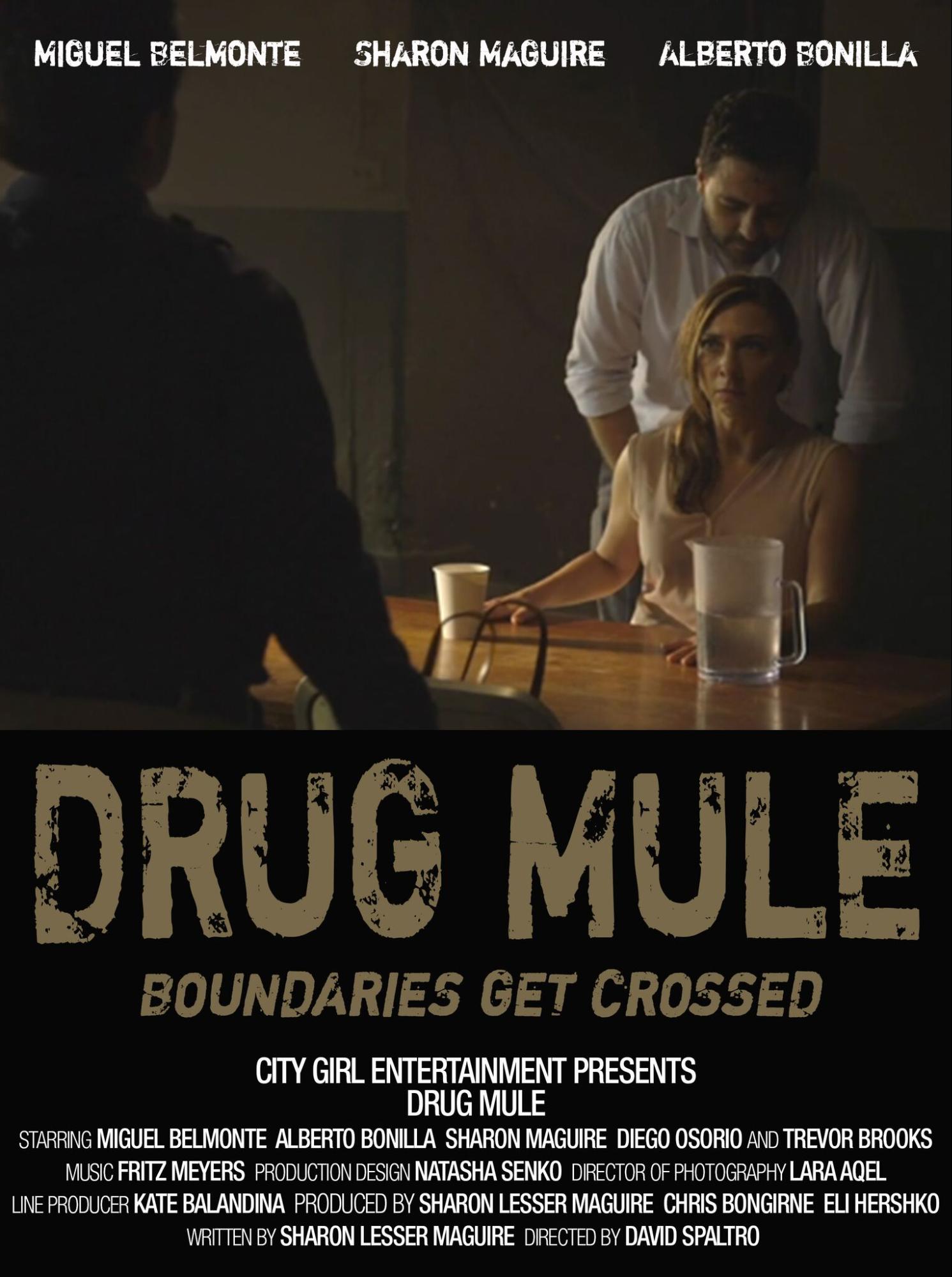 3 - Drug Mule.png