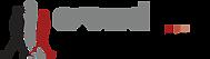Crowd Dynamics Logo