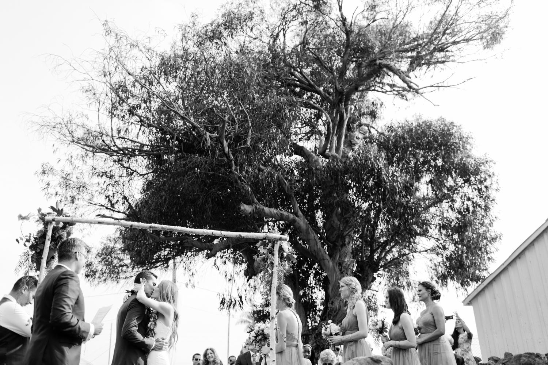 anna-ranch-hawaii-wedding-photographer-173.jpg