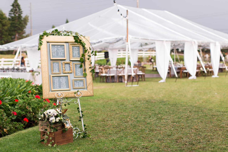 anna-ranch-hawaii-wedding-photographer-179.jpg