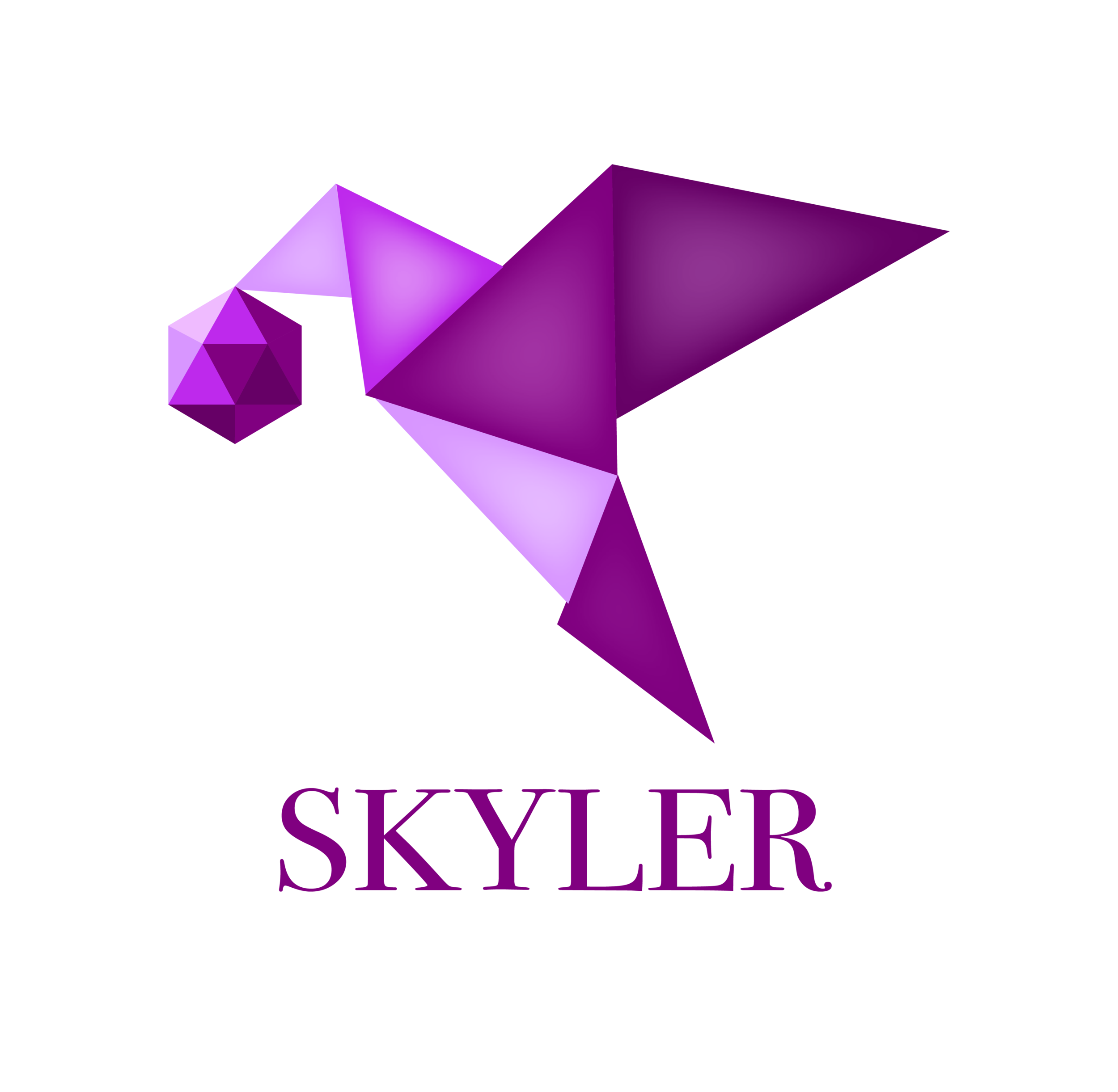 Skyler is a tool that helps teachers and students manage project-based learning from  beginning to end.