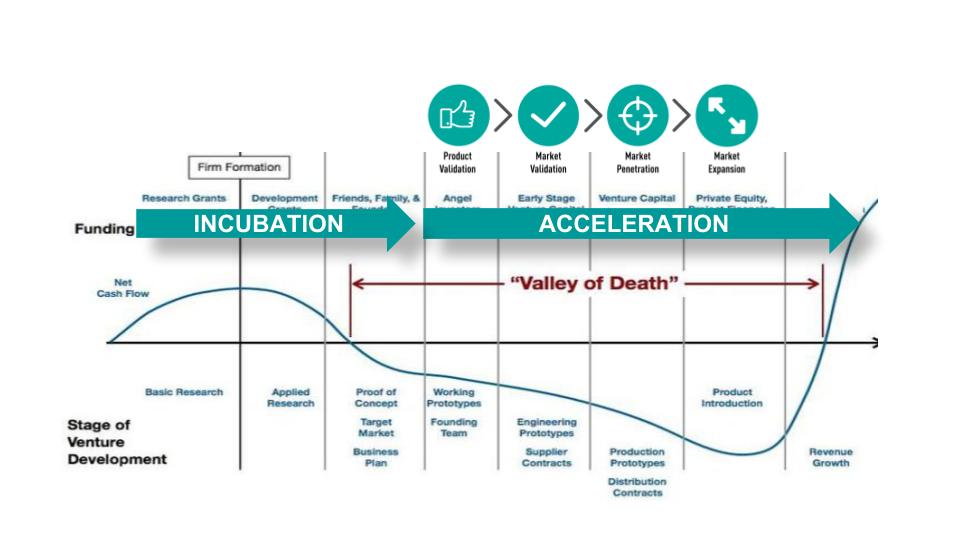 Startup Development Phases
