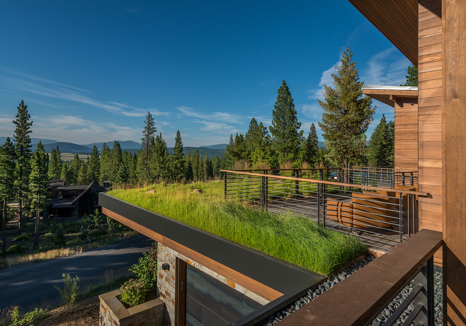 Lot 595_Exterior_2nd Floor Deck_Grass Roof_View.jpg