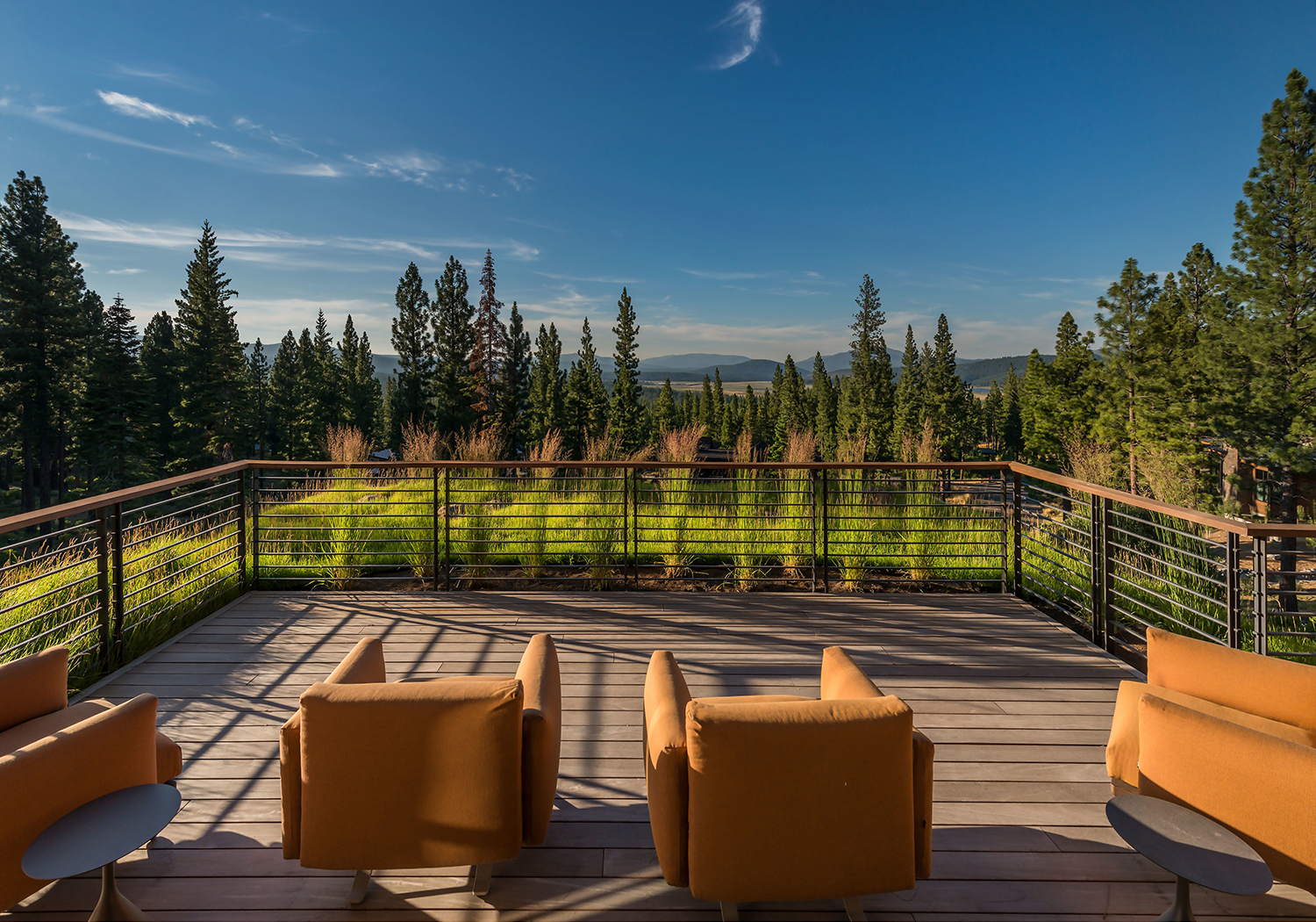 Lot 595_Exterior_Great Room Deck_Grass Roof_View.jpg