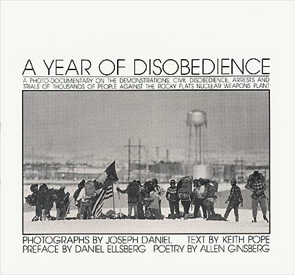Year of Disobedience original.jpg