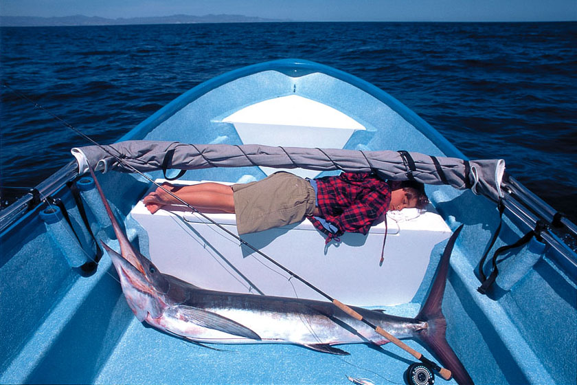 Penn and fly-caught breakfast marlin