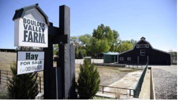 Boulder Valley Farm Sales Video