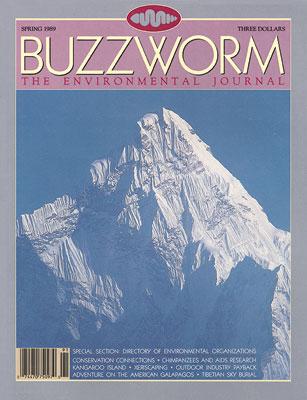 2.Second Issue - Spring 1989.jpg