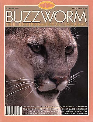 4. Fourth Issue - Autumn 1989.jpg