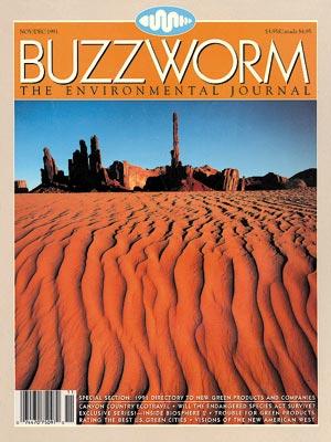 17.Seventeenth issue - Nov-Dec 1991.jpg