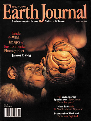 28.Twentyeigth Issue - Nov-Dec 1993.jpg
