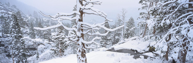 Winter Solitude Emerald Bay.jpg
