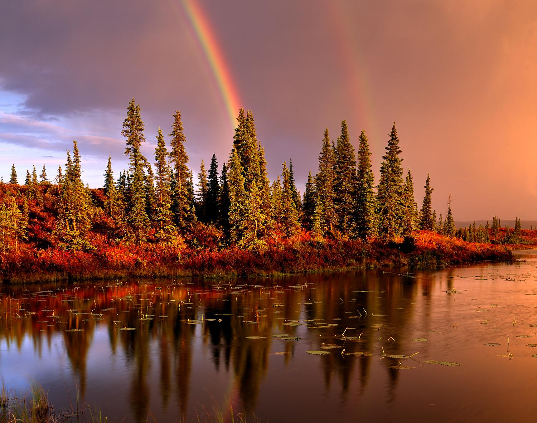Double Rainbow, Kettle Pond, Denali