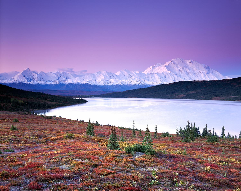 Morning Glow, Autumn, Denali