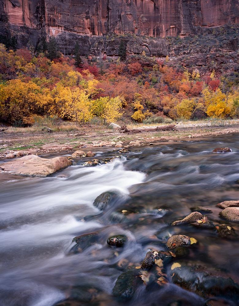 Virgin River and Color, Zion National Park, Utah
