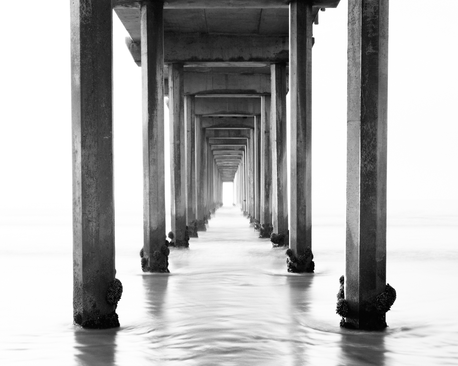 Scripps Pier Black and White