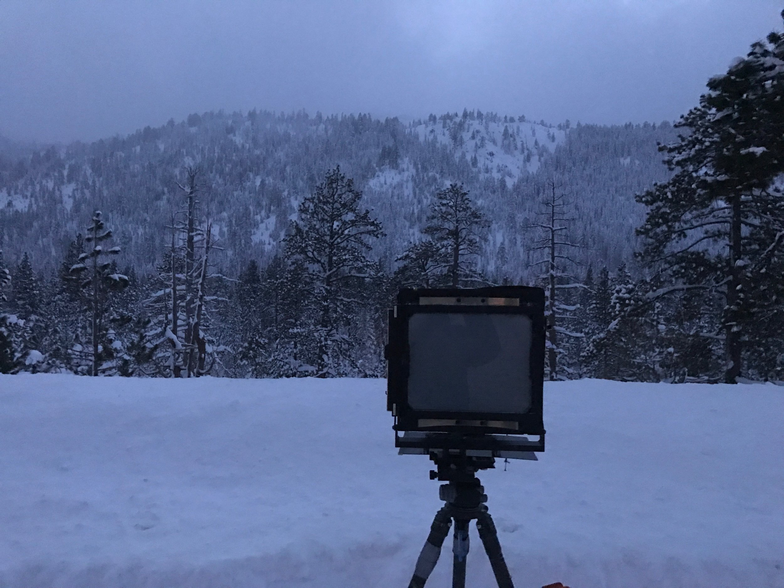 iphone image of my 8x10 film camera after shooting the final image above.