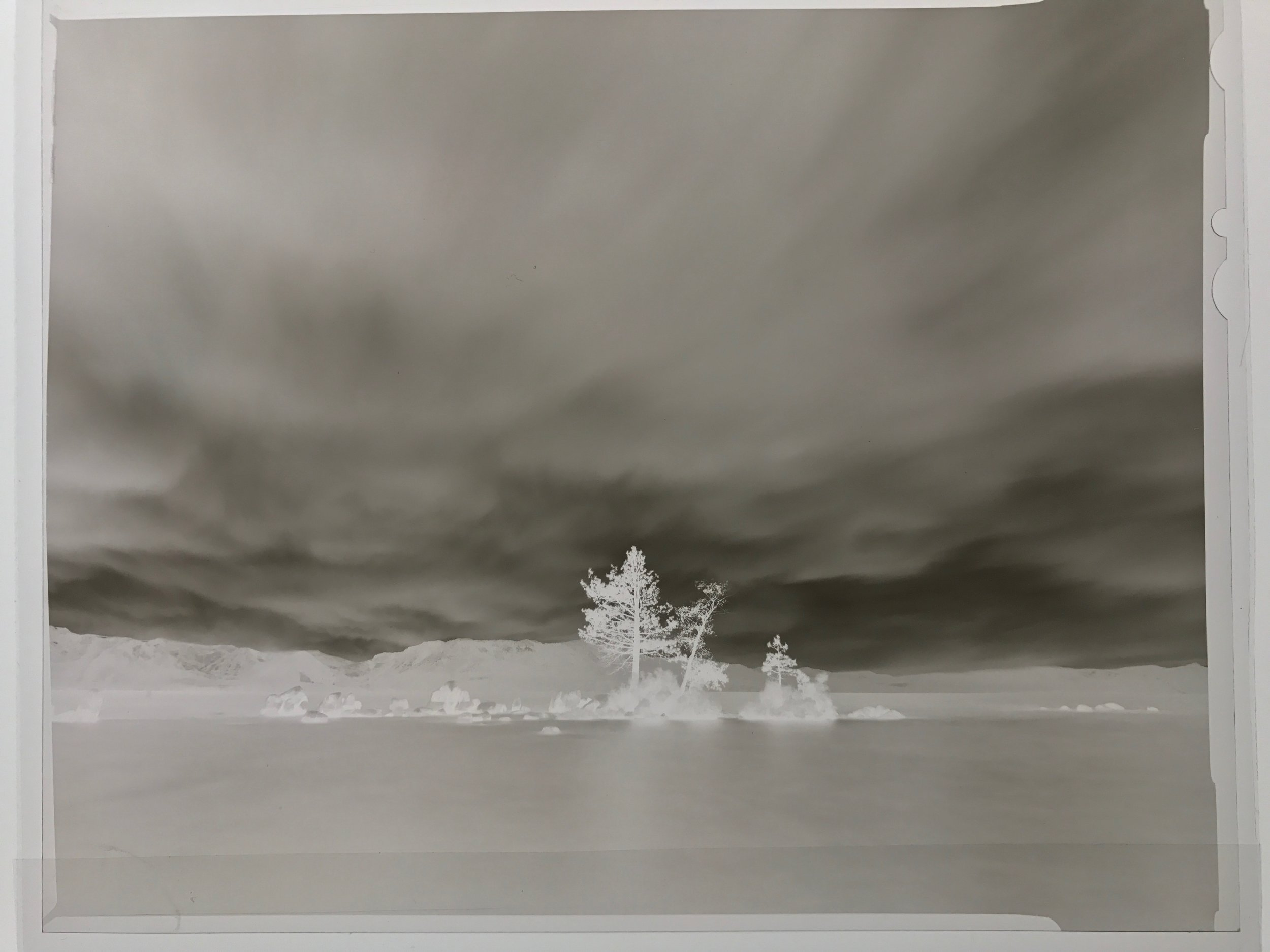 The Original Black and White Negative, Ilford FP4 4x5 inch (photographed with my iphone on the light table)
