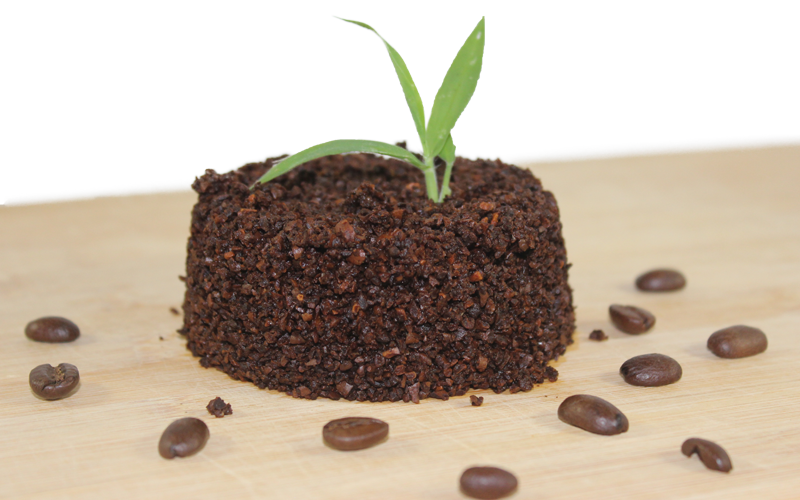 Craft Coffee, Recycle Coffee, Coffee Scrub, Coffee Gardening, Coffee Blog, Used Coffee Grinds, Coffee Cooking