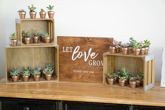 Succulents potted into rose gold terra-cotta pots with a custom sign makes for a perfect favor station. #letlovegrow