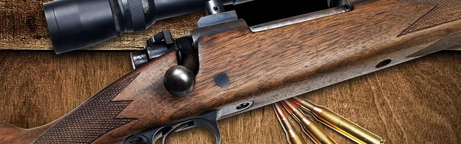 Firearms header.jpg