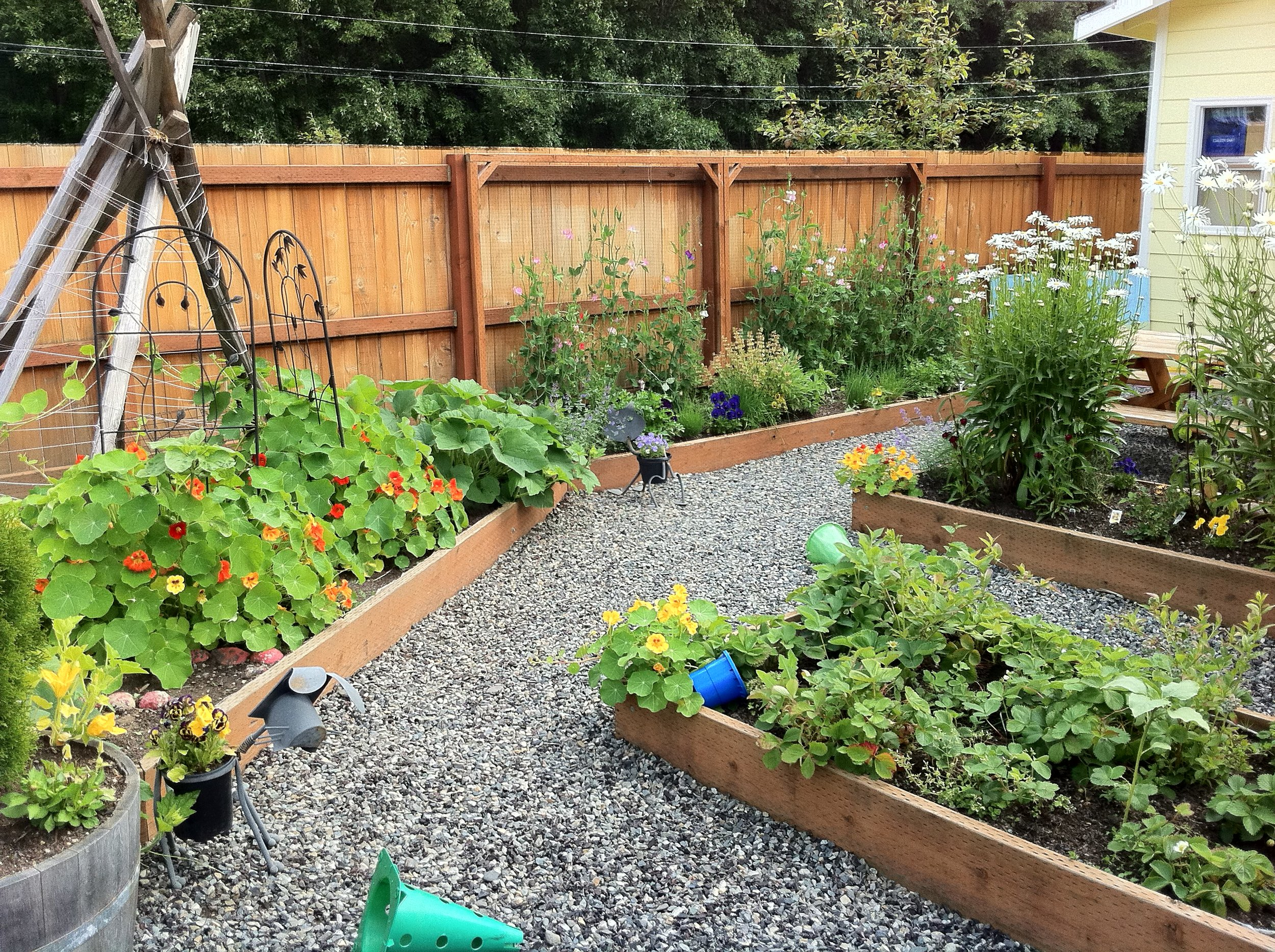 Copy of Gallery Preschool Garden .JPG