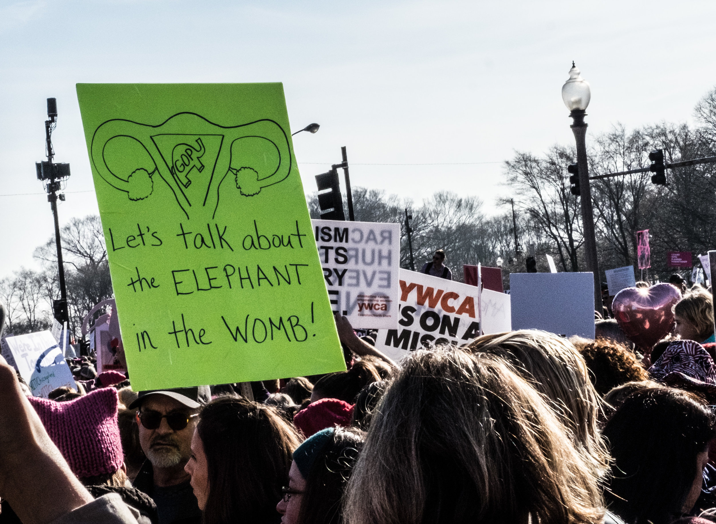 Womens March on Chicago-10.jpg