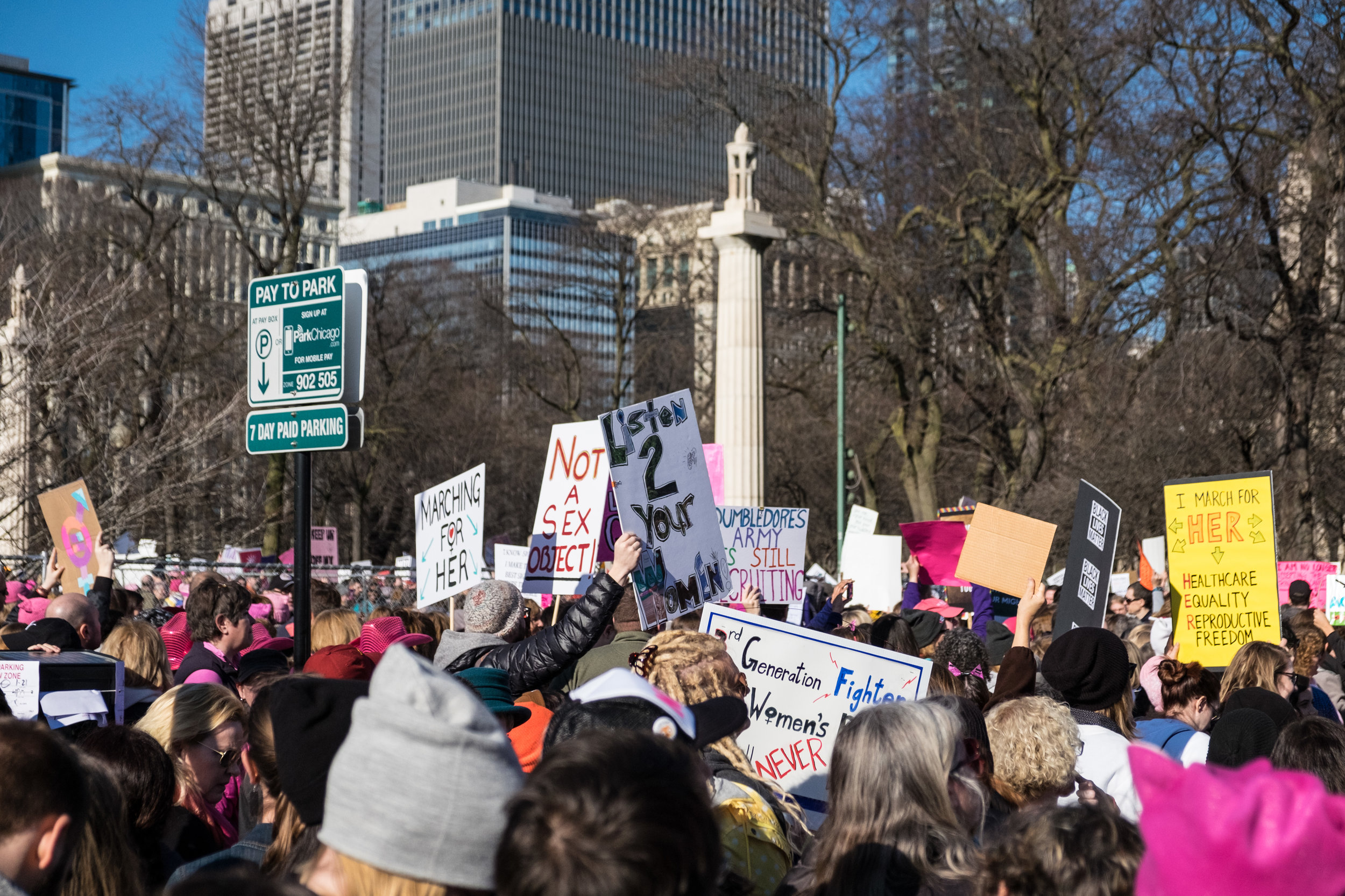 Womens March on Chicago-18.jpg